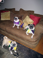 norman, winston and sela in costume