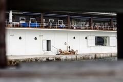 vacaciones en el mar (hireen) Tags: canon 50mm donosti sansebastian escaleras donostia clubnutico eos450d hireen