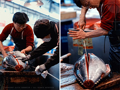Cutting the tuna: Tsukiji Fish Market, Tokyo (Alfie | Japanorama) Tags: morning red food fish men japan sushi japanese tokyo early market auction sashimi crowd tsukiji tuna maguro lowangle traders nikond300 nikon85mmf14daf photowalksintokyo photographywalksintokyo tokyophotowalk
