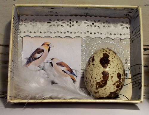 Small Egg Shadow Box2