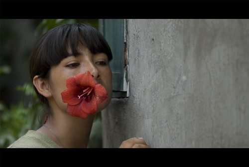 Fausta-fleur