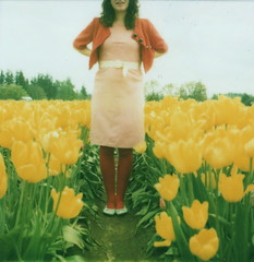it's true (girlhula) Tags: polaroid sx70 together 600 tulipfestival theyreperfect roidweek2009 thoseyellowtulips thatpinkdress