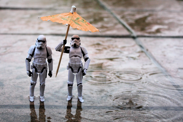 Trooping in the rain