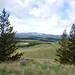 edith hill