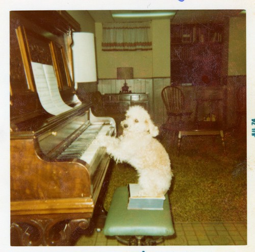 Carmel's mother Kim, playing the piano - July, 1974