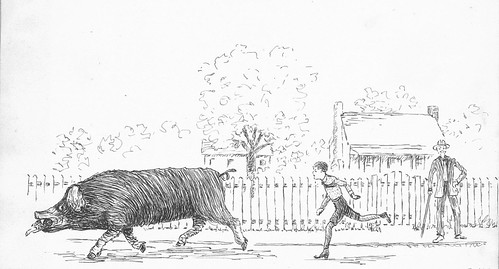 Pig Thief