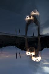 NARCISO 9 (Jpy) Tags: sea sky selfportrait reflection male water pool silhouette clouds self ego naked nude mirror agua legs cloudy chest flash nubes espejo reflejo multiple silueta autorretrato hombre narciso narcissus desnudo