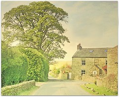 Outhgill in May (~ paddypix ~) Tags: street england tree green spring may cumbria northern villlage outhgill