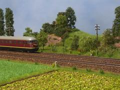PICT9356 (dampflok44) Tags: modelleisenbahn modelrailroad modellbau modellbahn modelllandschaft modulanlage