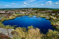 Just some water (Sergei-J) Tags: trees light summer sky sun lake tree nature water grass clouds photoshop iso100 spring nikon rocks day sweden adobe f8 varberg lightroom 1755 halland 17mm cs5 d7000