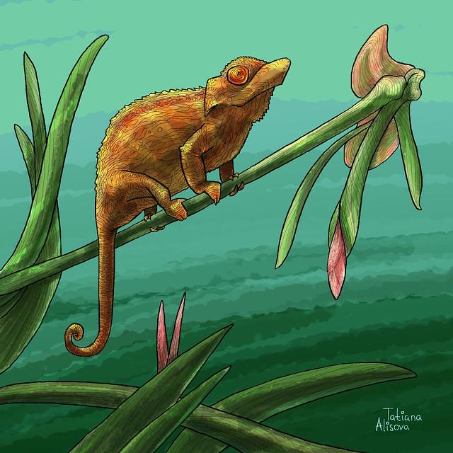 chameleao