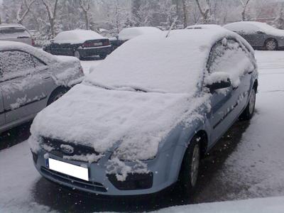 nevada coche