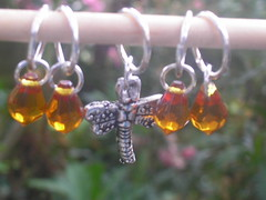 Dragonfly and Amber