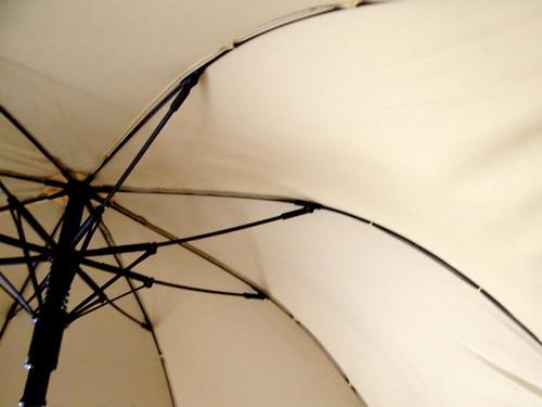 Cheeky Umbrella