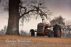Tractor Art