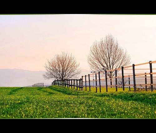 http://farm4.static.flickr.com/3342/3451214734_37ef6b20d1.jpg