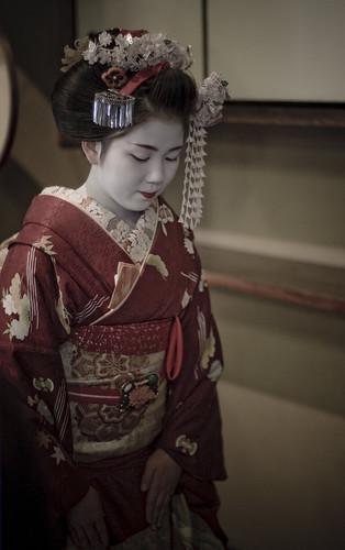14675 : bow -Ichimomo #4-