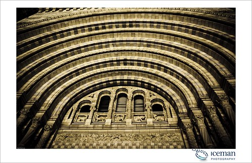 Natural History Museum 012