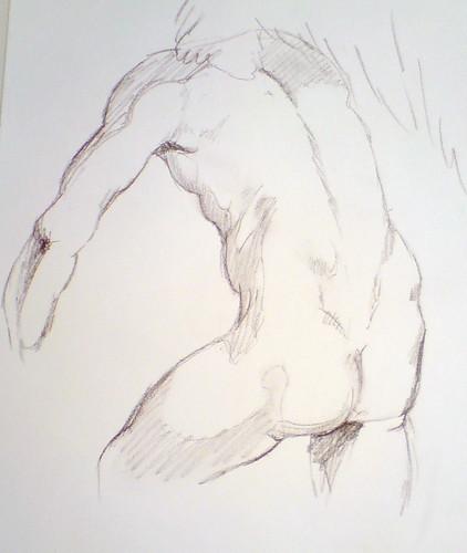 torso 45