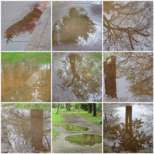 puddle mosaic