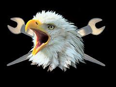 eapud (koolmann1) Tags: wallpaper bird digital photomanipulation photoshop real cool eagle union reflective morph freelance realistic ironworker spudwrench koolmann