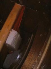 PA151081 (Storer Boat Plans) Tags: catamaran epoxy plywood boyer aclass