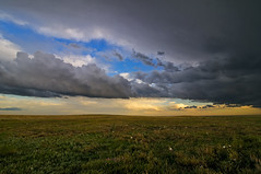 Central Shortgrass Prairie Turbulence (Fort Photo) Tags: flowers sky cloud storm nature field grass weather clouds landscape nikon colorado searchthebest cloudy weld co prairie grassland 2009 grasslands grassy neco d300 pawnee usfs pawneenationalgrassland naturesgallery aplusphoto tokina1116