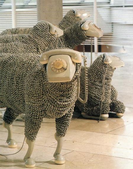 08_sheep10