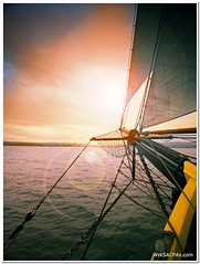 Sailing (California CPA) Tags: ocean california sunset sea colors sailboat lumix boat sailing wind panasonic flare danapoint notreally oceaninstitute nothdr olympuslens micro43 microfourthirds 918mm dmcgf1