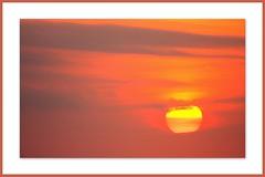 CUBA 2011 (Lo et Clina ..) Tags: sea sun art beach nature sunshine birds animal canon de photography la soleil photo shot cuba most plus oiseaux meilleurs shot best the day great les mes soleil coucher belles prfres interesting journe