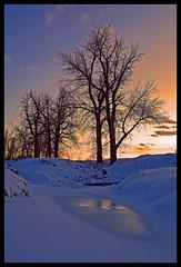 Achieving Balance (stevenbulman44) Tags: winter sunset sun snow tree calgary ice damn