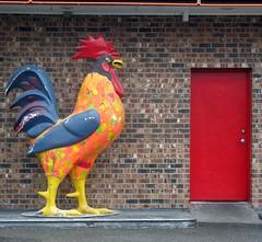 The Roost (EillahSuz) Tags: door brick bird statue bricks feathers reddoor sidewalk rooster riotofcolours cmwdred