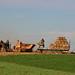 baling hay 2