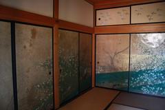 kobuntei (pink mochi) Tags: spring mito kairakuen umematsuri plumblossomfestival