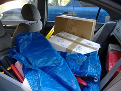My Backseat on the First Day of Moving Small Stuff