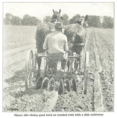 Horse-drawn disk cultivator