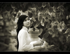 Ao dai Vietnam (TA.D) Tags: portrait bw white girl beautiful leaves nikon asia dress bokeh longhair monotone vietnam dai tad ao hcm saigon hochiminhcity hcmc hochiminh odi mywinners abigfave chandung aplusphoto d700 theunforgettablepictures aodaivietnam odivitnam