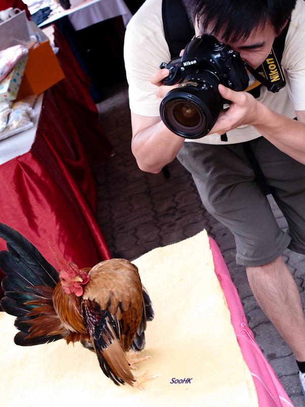 Taking Cock @ KL, Malaysia