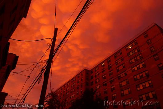 Hoboken Crazy Sky Cotton Puff Clouds 2