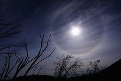 Sun halo / 日暈 (kth517) Tags: halo australia 澳洲 sunhalo mtbuffalonationalpark 日暈 mountbuffalonationalpark victoriastate 維多利亞州 水牛山國家公園