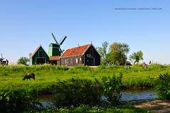 Typical Dutch Countryside - Zannse Schan (kelvin_luffs) Tags: flowers abstract holland netherlands amsterdam relax countryside scenery relaxing tranquility windmills mills dutchcountryside flowersinholland windmillabstracts zannseschan sceneryinnetherlands
