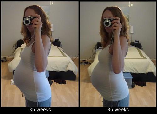 35-36 week comparison