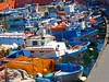 Mediterranean harbour (Marite2007) Tags: blue red italy orange colors port docks boats islands harbor wooden intense fishing marine mediterranean colours harbour vibrant south picture vivid maritime environment setting picturesque catchy soe ponza buoyant flickrsbest golddragon shieldofexcellence