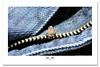 Time Flies! (Imapix) Tags: macro nature animal bug fly photo photographie jeans flies zipper levis zip mouche ykk flie gaetanbourque fermetureéclair yoshidakogyokabushikikaisha imapixphotography gaëtanbourquephotography