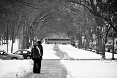 D300-20090302-151621-bw (Nivad) Tags: winter bw snow bus love mall dc kiss couple dof snowstorm dcist snowfall wonderland greeting gotcha snowpocalypse aom09