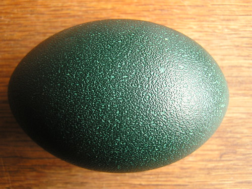 Emu Egg Rought - good