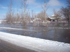 Yard is flooded over night (legallyglinda) Tags: flood 2009 westfargo sheyenneriver