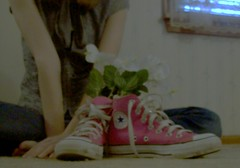 ShoeFlowers (BREananicOLE) Tags: flowers love shoes converse chucks chucktaylors strictlypinkconverse shoesandflowers