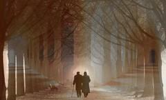 Walking into the light (Eisgrfin (very busy)) Tags: light people musictomyeyes abigfave specialpicture thesuperbmasterpiece creattivit eisgrfin theoriginalgoldseal
