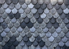 Blue fish-scale pattern (:Linda:) Tags: blue texture germany tile thringen pattern village shingle row thuringia onecolor slate blau resemble thuringian schiefer brnn similarto monocolored resembling hnlich beavertailshaped fishscalepattern schieferschindel fischschuppenmuster